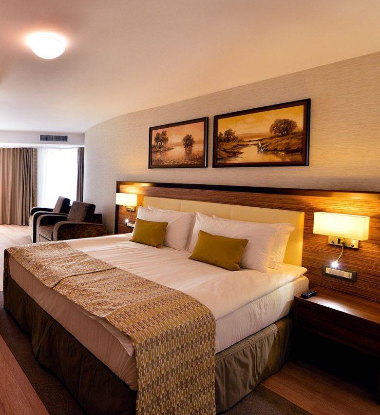 006.-Hotel-Egreta-4-stele-Dunavatu-de-Jos-Apartament-Junior.jpg