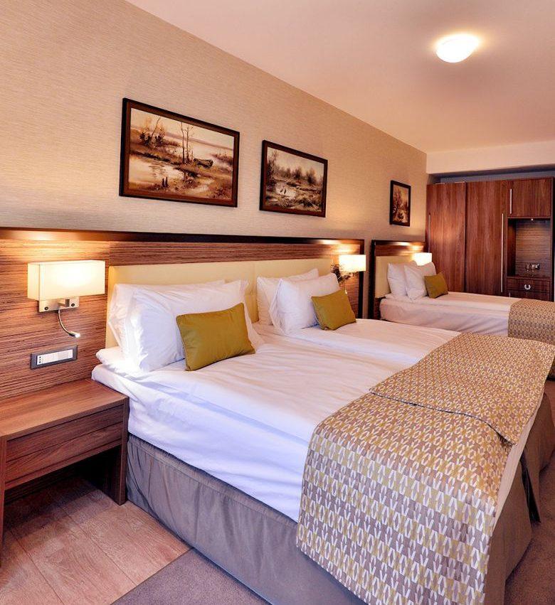 008.-Hotel-Egreta-4-stele-Dunavatu-de-Jos-Camera-Executive.jpg